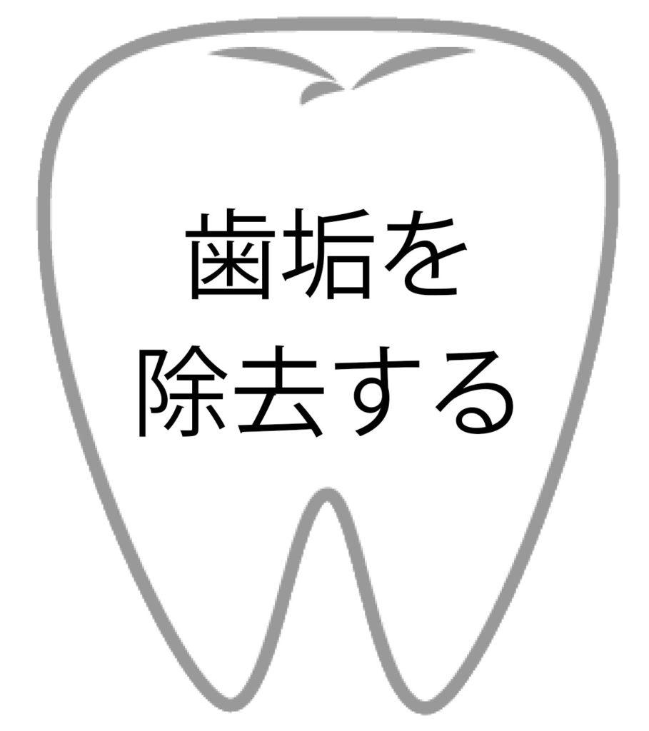 歯垢を除去する
