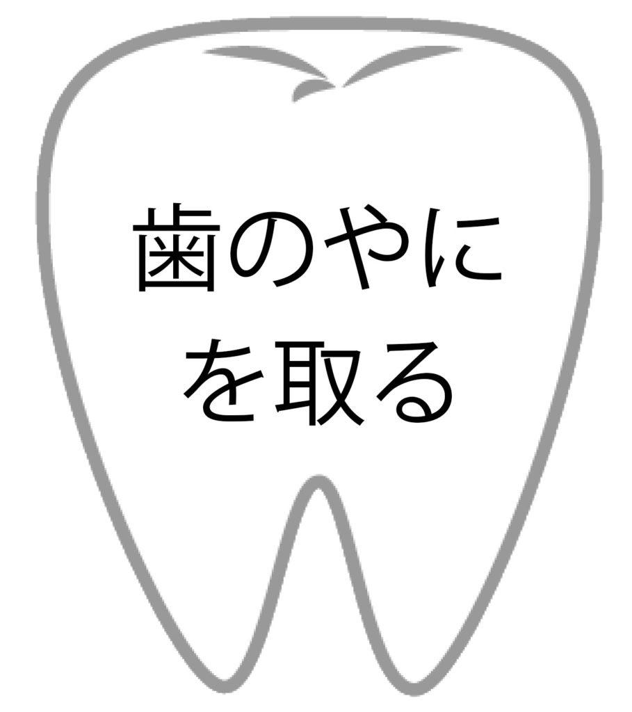 歯のやにを取る